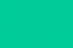 PP04 Mint Pastel Plain