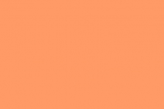 PP06 Peach Pastel Plain