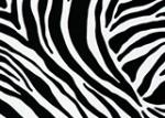 10133 Zebra Пленка GEKKOFIX