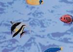 10971 Fishes Пленка GEKKOFIX