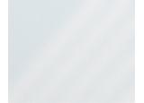10280 Transparant White Пленка GEKKOFIX
